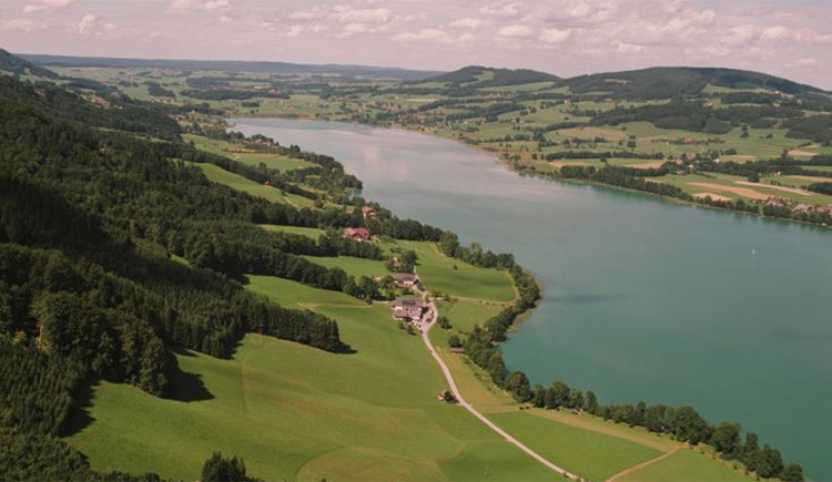 Blick auf den Ort, See, Landschaft. (© Tourismusverband MondSeeLand)