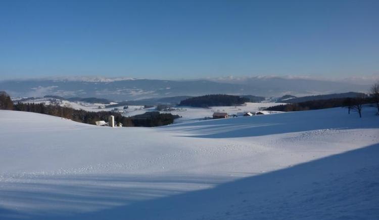 Ausblick auf den verschneiten Böhmerwald (© Privat)