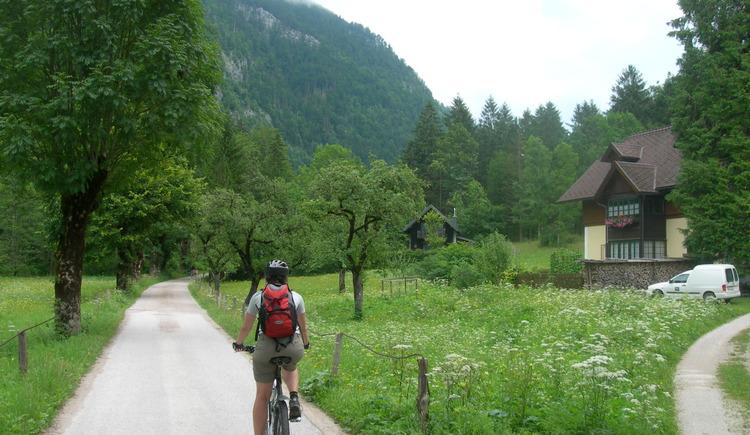 Rindbach (© Oberösterreich Tourismus / green-solutions)