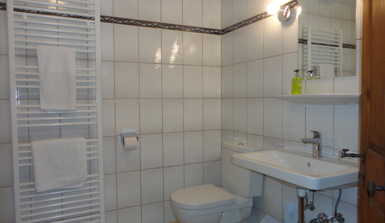 Brightly furnished bathroom with vanity, shower and toilet.