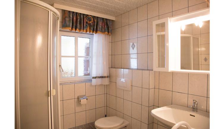 Badezimmer mit Dusche, Toilette, Waschbecken, Spiegelschrank, im Hintergrund ein Fenster