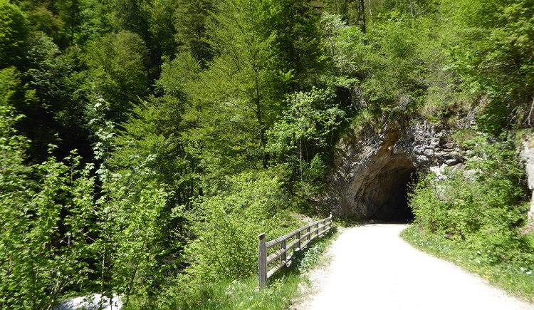 Hintergebirgsradweg - Auf den Spuren der Waldbahn. (© TV Nationalpark Region Ennstal)