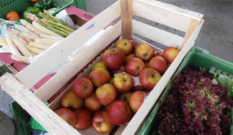frisches Obst & Gemüse