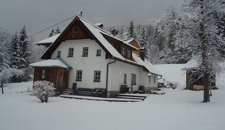 Dreamlike winter atmosphere in the holiday home Waldbankerl in Bad Goisern