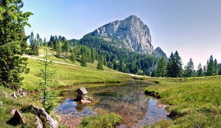 Teichlboden - Wurzeralm mit Blick auf Stubwies (© TVB Pyhrn-Priel/Sulzbacher)