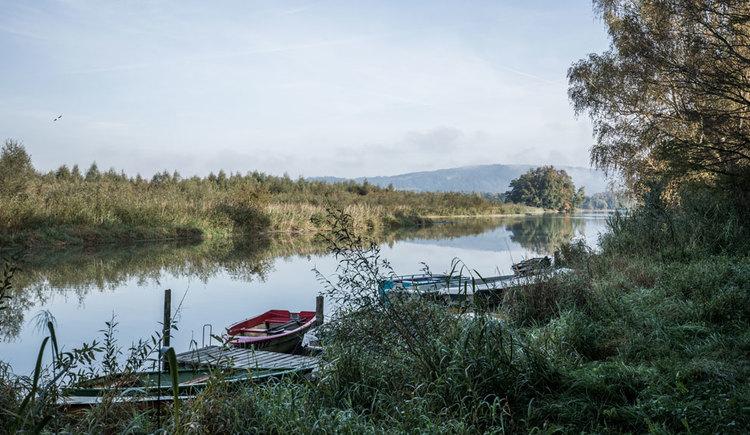 Blick auf den Inn mit Booten. (© Oberösterreich Tourismus GmbH/Robert Maybach)