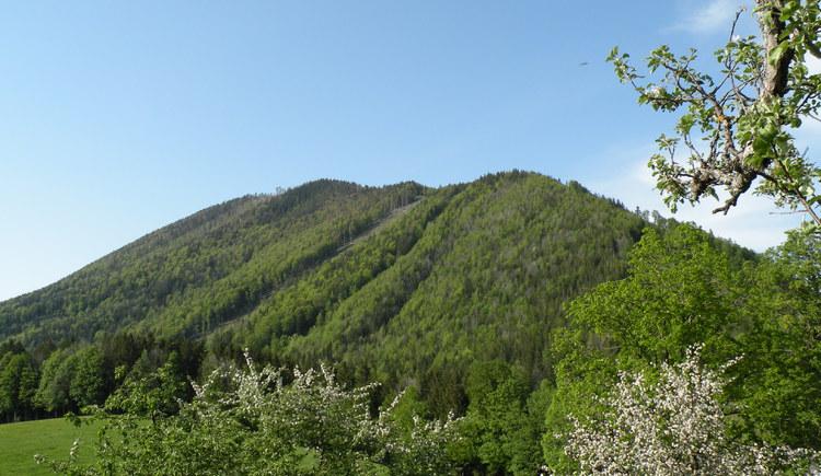 Mountain \