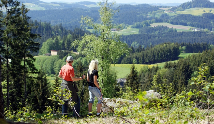 Natur-Geheimnis-Pfad (© Marktgemeinde St. Georgen am Walde)