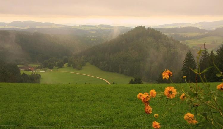 Ausblick vom Grundstück (© Ferienparadies Hiaslbauer)