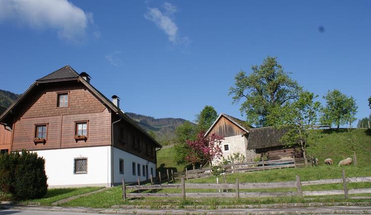 Rezeption Wohnhaus Schmeißl (© Schmeißl)