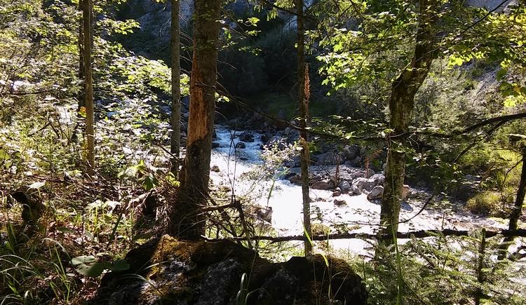 Fluss im Hetzautal am Weg vom Almtalerhaus bis Einstieg.