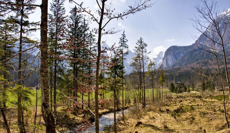 Salzsteigjochblick (© TVB Pyhrn-Priel/Sulzbacher)