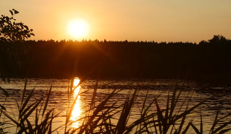 Wunderschöne Abendstimmung am Holzöstersee/Franking