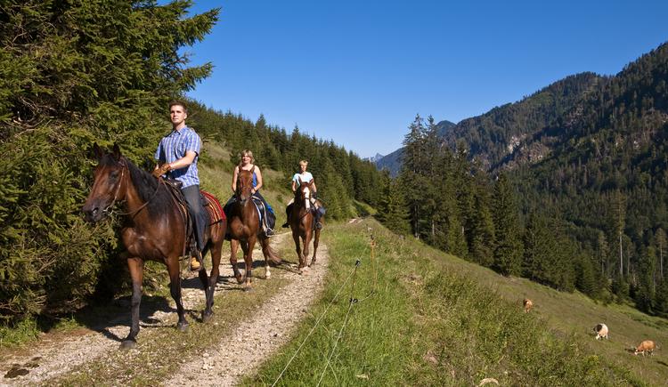 (© OÖ.Tourismus/Erber)