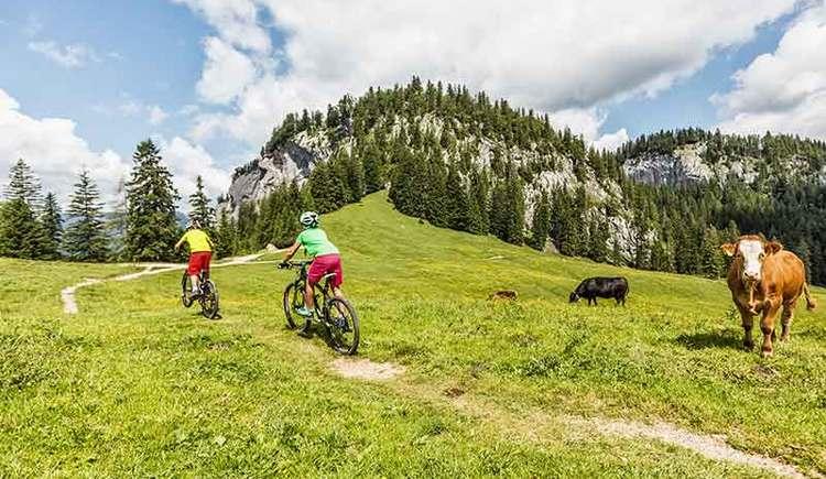Mountainbiken auf der Strecke der Dachsteinrunde (© Andreas Meyer)