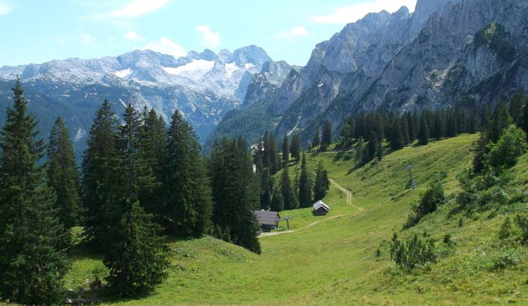 Die Zwieselalm bietet sanfte Bergwanderungen, geeignet auch mit Kleinkindern und für ältere Gäste. Bequem erreichbar mit der Gondelbahn. (© Knappe / Benesteem)
