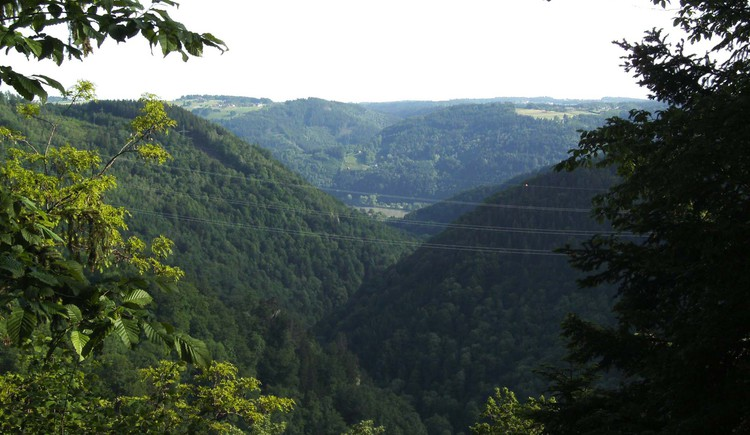 Blick zur Donau. (© TV Pfarrkirchen)