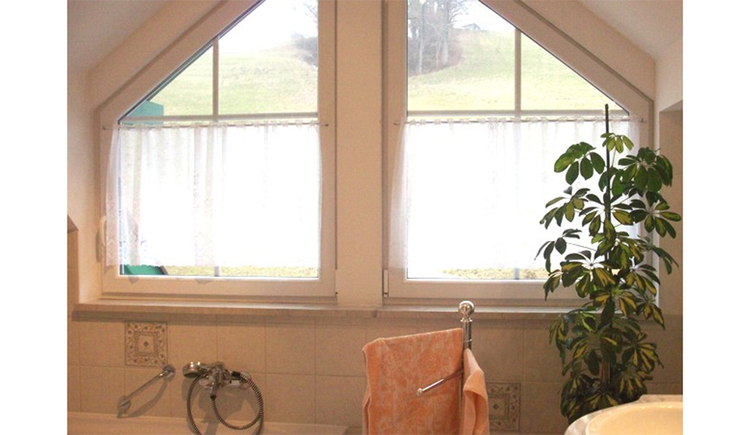 Bathroom, large window in the background
