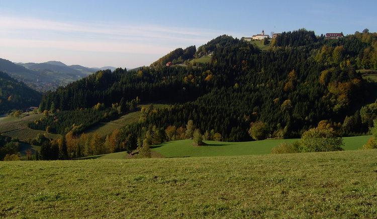 Kaltenberg (© Mühlviertler Alm)