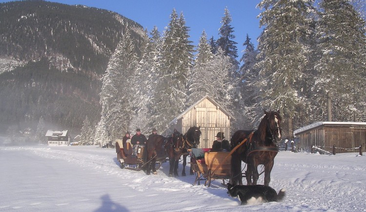 Horse-drawn sleigh ride, two carriages. (© Grill Elisabeth)