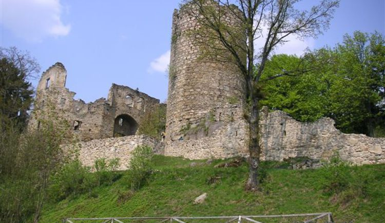 Ruine Prandegg (© TV Bad Zell)