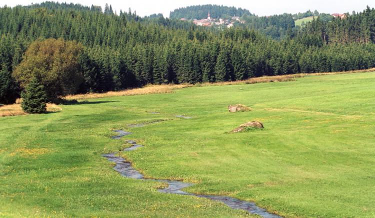 Liebenau Landschaftsaufnahme. (© TTG Tourismus Technologie)