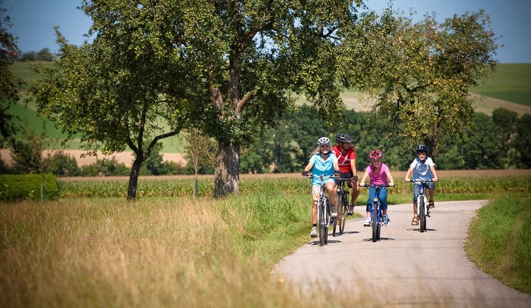 Numerous bike paths away from busy roads. (© Oberösterreich Tourismus GmbH | Hermann Erber)
