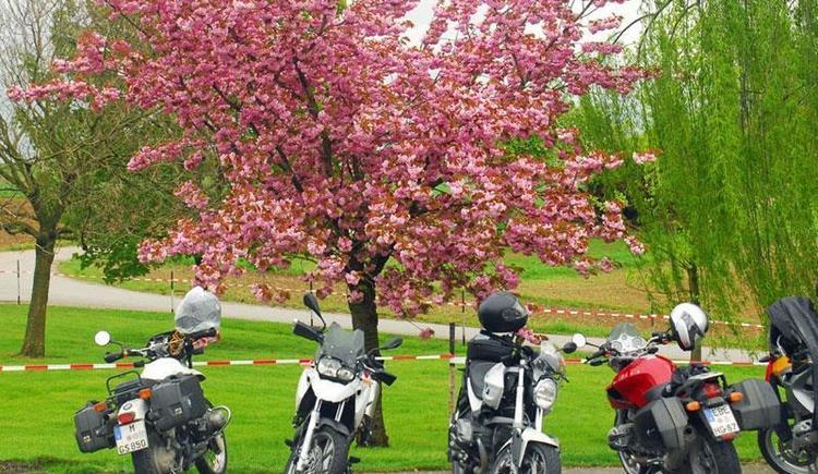 """BMW """"Meet & Greet"""" - internationaler Motorradtreff (© h.denzelgmx.at)"""