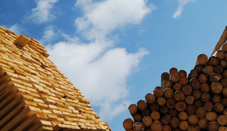 Mittendorfer Holz (© Mittendorfer GmbH & Co KG)