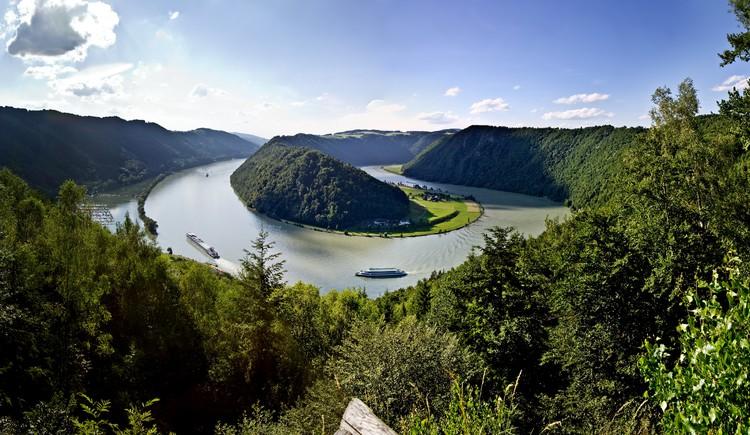 Donauschlinge Schlögen, Donau Oberösterreich, Haibach ob der Donau