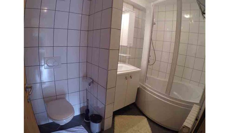 bathroom with shower, mirrowed wardrobe, toilet, washbasin