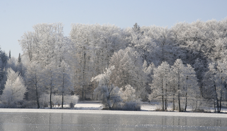 Winter in Seelentium (© Seelentium)
