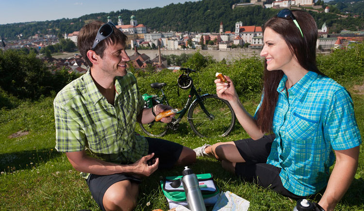 Donauradweg Klassiker von Passau nach Wien (© OÖ Touristik/Himsl)