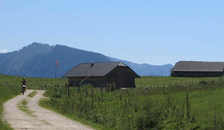 ein Radfahrer, der auf einem Schotterweg entlang fährt, dieser teilt eine Wiese, auf der einen Seite sind Hütten zu sehen, im Hintergrund befinden sich Berge. (© www.mondsee.at)