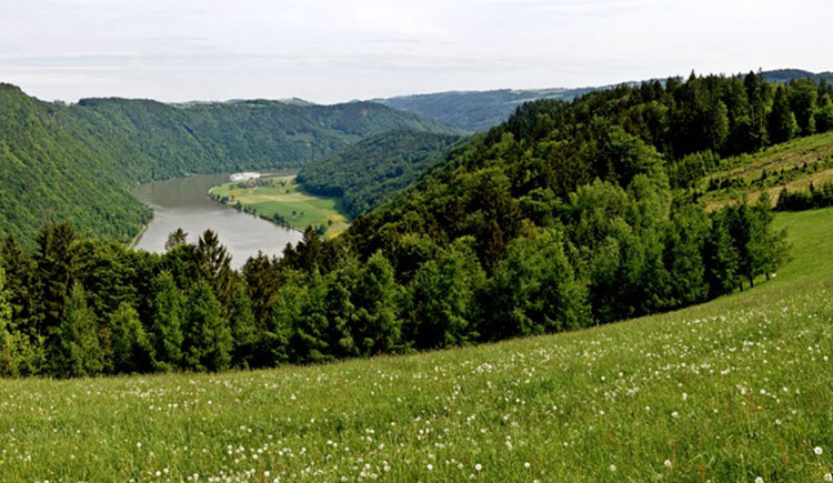 Panoramablick Kerschbaum. (© WGD Tourismus GmbH_Projektkraft)