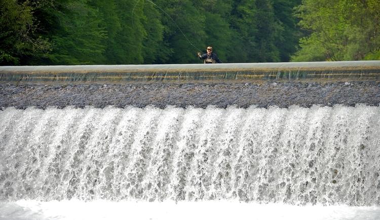 Fliegenfischer Steyr Fluss