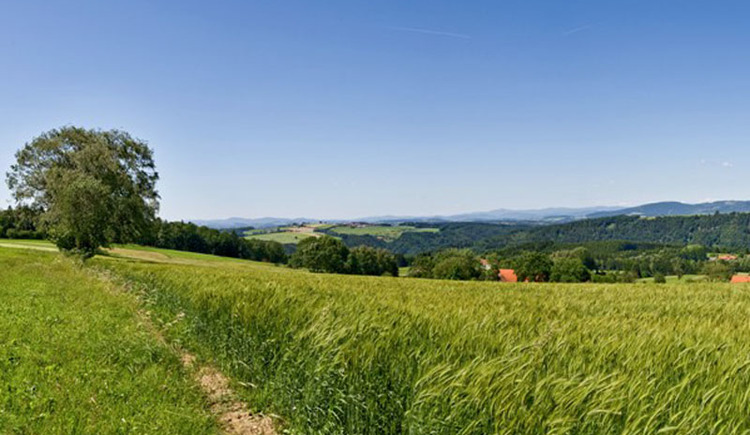 Panoramablick Esternberg