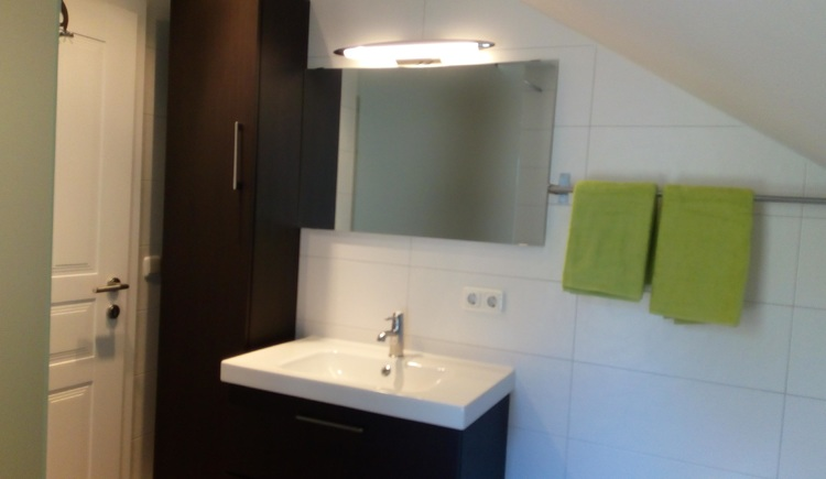 Bathroom in the Apartment Stüger in Bad Goisern am Hallstättersee.