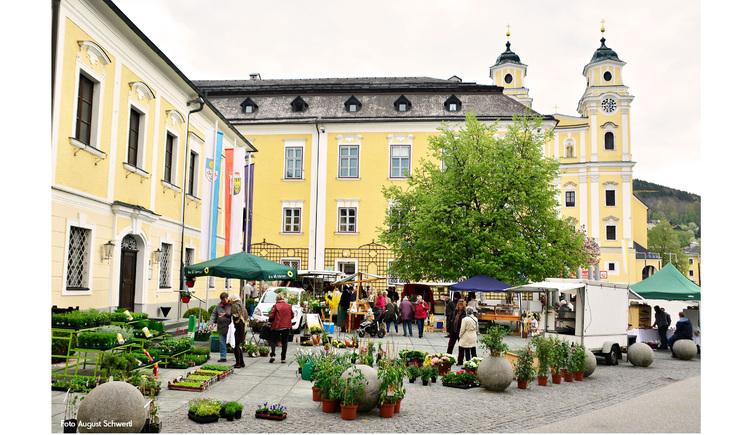 Blick auf den Bauernmarkt mit Pflanzen, Marktschirmen, seitlich Gebäude, im Hintergrund die Kirche. (© Schwertl)