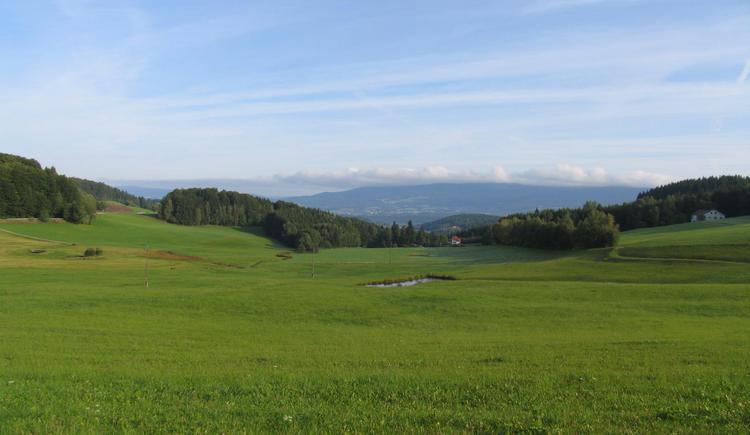 Beim GH Geiner in der Kohlstatt bei Julbach finden Sie diesen unvergleichbaren Blick auf den Böhmerwald.