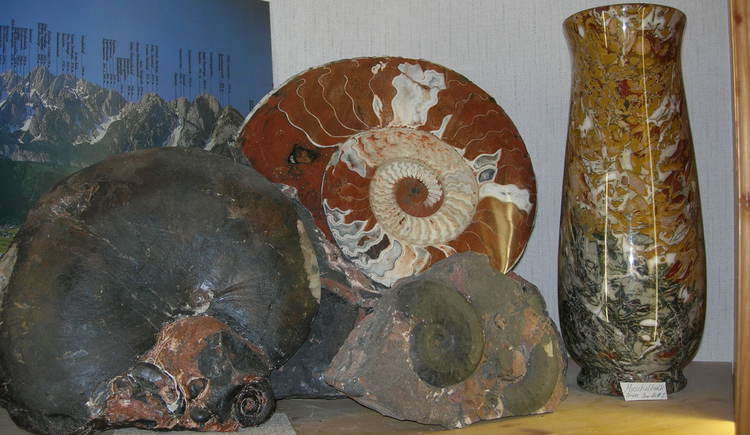 Decorative articles such as vases and snail stones.