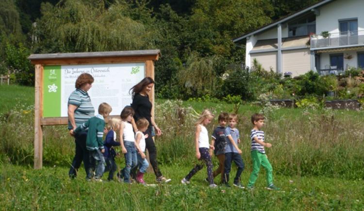Kinderführung am Bienenhof (© Bienenhof Attersee)