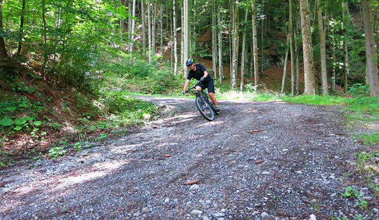 Mountainbiker/innen, die gerne Schotterstraßen,- Trails und Single-Trails fahren