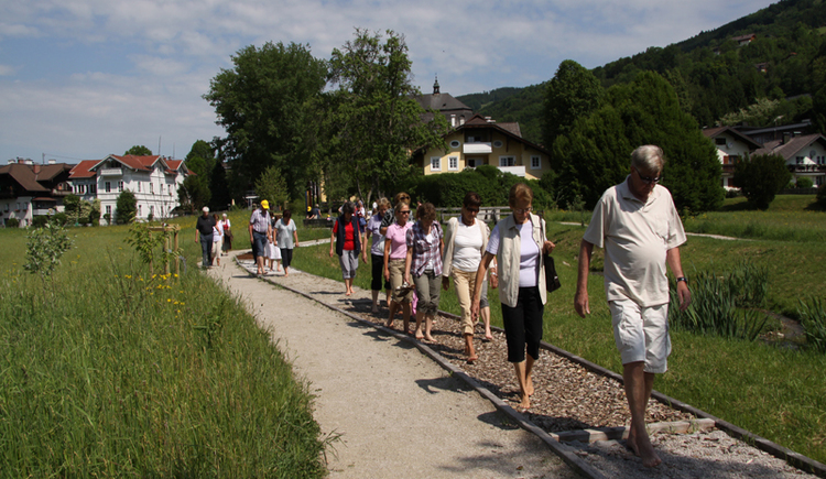 People are going on a gravel path, meadow