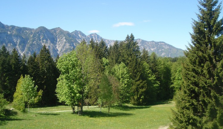 Genießen sie die Ruhe und den herrlichen Ausblick auf die umliegende Bergwelt