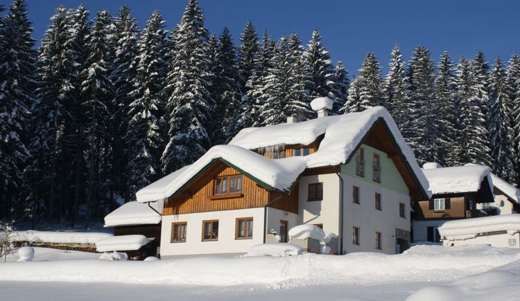 Even in winter the exterior view of the Apartment Barbara Egger in Gosau is beautiful.