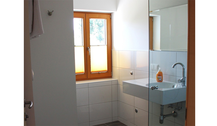 look at the bathroom with sink and Soap, window in the background
