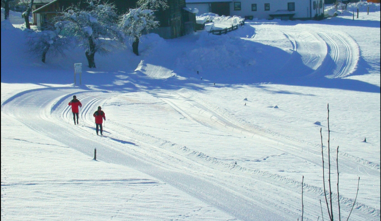 Cross-country skiing in Gosau