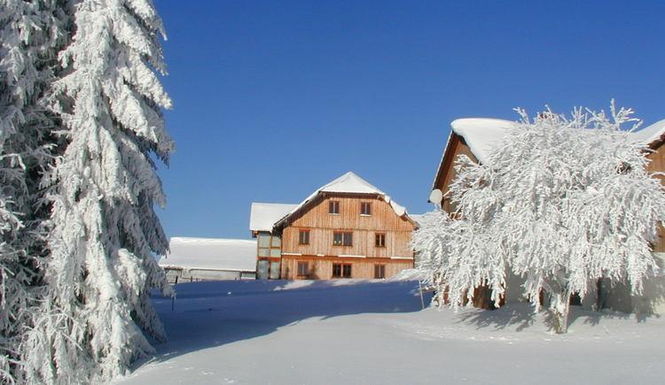 Märchenhafte Schneedecke. (© Helma Esterhammer)