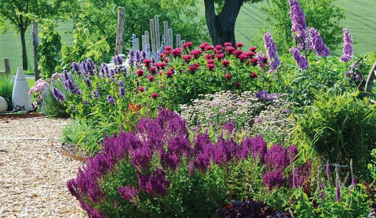 Bunte Blumen in einem Hofgarten.